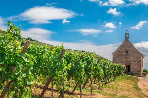 the story behind cr 233 mant d alsace wine enthusiast magazine