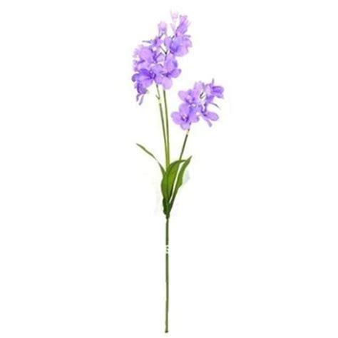 Fleurs Longue Tige