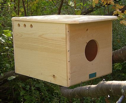 owl houses owl boxes owl nest boxes owl nesting boxes