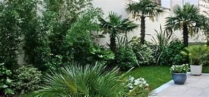 Terrasse Piscine Jardin Exotique Accueil Design Et Mobilier