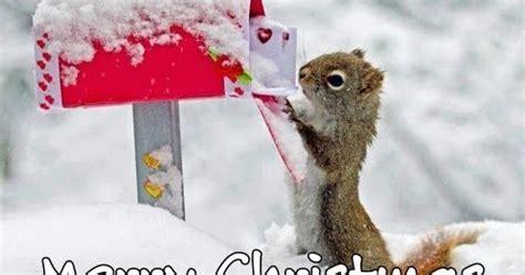 kumpulan gambar ucapan selamat natal    awalilah