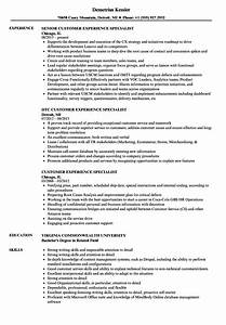 customer experience specialist resume samples velvet jobs With customer experience resume