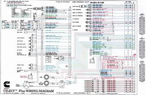 6 Best Images Of Cummins N14 Engine Diagram