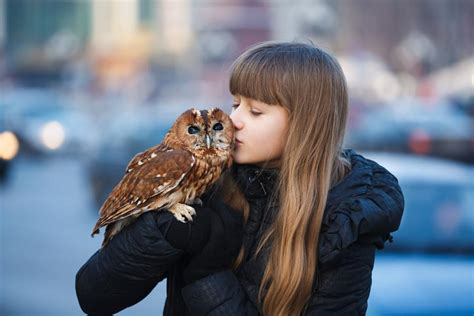 Things You Always Wanted To Know About Keeping Owls As Pets
