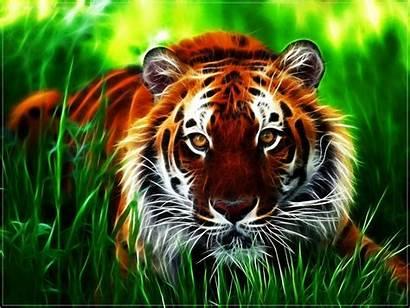Desktop Animal Wallpapers Animated