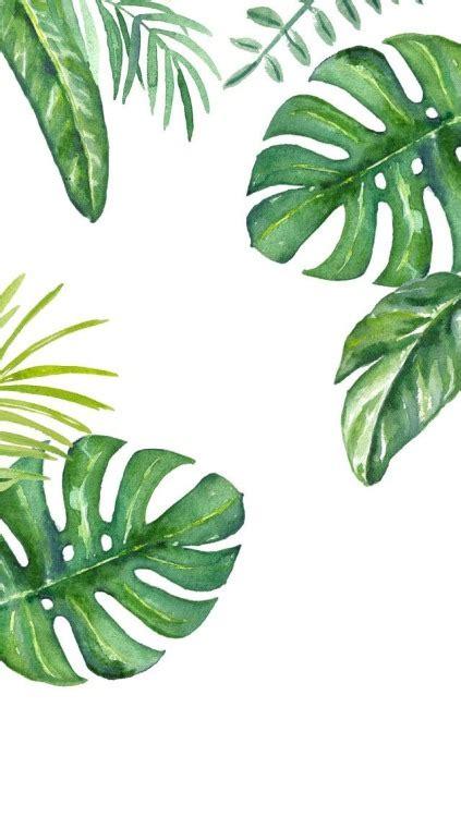 palm leaves tumblr