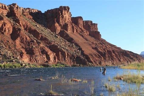 Arizona Fly Fishing: Lees Ferry - Arizona ...