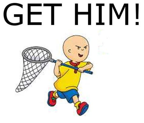 Caillou Memes - caillou meme www imgkid com the image kid has it