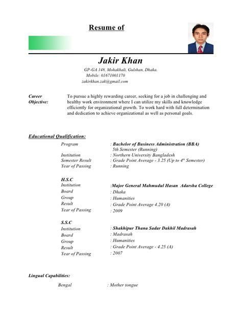 Professional Curriculum Vitae Sle by Pin By Ahmad Thekingofstress On Kumpulan Contoh