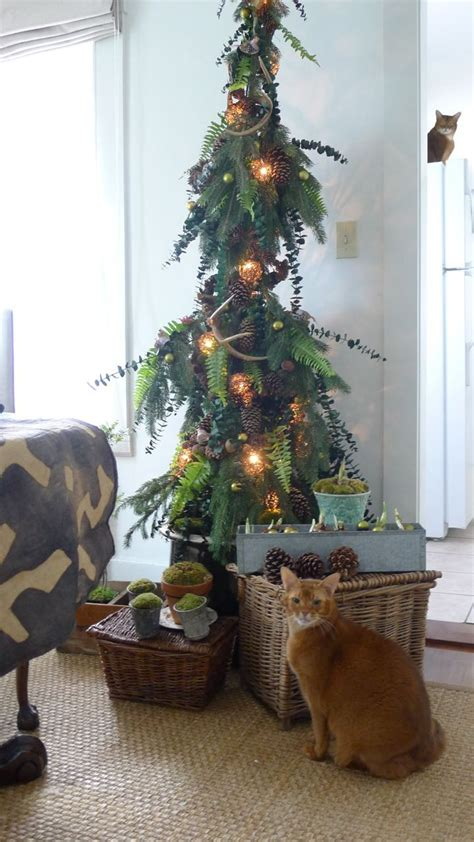 images   christmas  pinterest trees