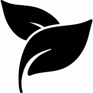 Herbal spa treatment leaves - Free nature icons
