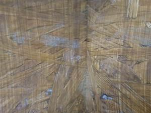Osb Platten Im Außenbereich : haltbarkeit osb terrarium kulturformen und methoden gesellschaft f r fleischfressende ~ Orissabook.com Haus und Dekorationen