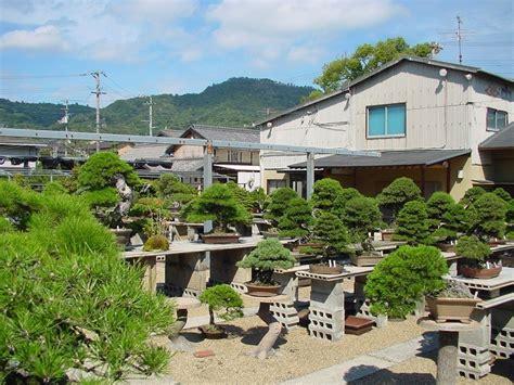 Japanischer Garten Erlangen by Japanischer Garten Bonsai Dorf Kinashi