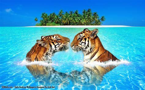 Wildlife Desktop Wallpaper 62 Images