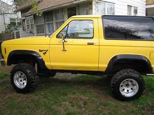 FRDstang03gt 1984 Ford Bronco II Specs, Photos, Modification Info at CarDomain