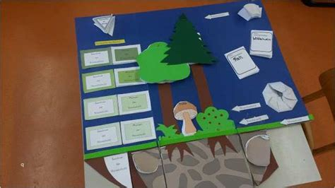 A lapbook is a useful tool to collect in a single folder materials related to a chosen topic, in an interactive and creative. Lapbook Vorlagen Wald Cool Lapbook Vorlagen Zum Ausdrucken ...