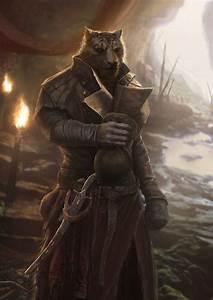 Каджит,TES расы,The Elder Scrolls,фэндомы,TES art,Skyrim ...