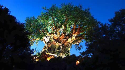 Disney Animal Kingdom Wallpaper - disney s animal kingdom 2014 tour walt disney