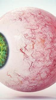 3D eye green 1 - TurboSquid 1426079
