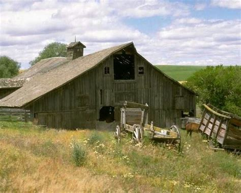 Alabama Barns by Best 1514 Barns And Sheds Ideas On Country
