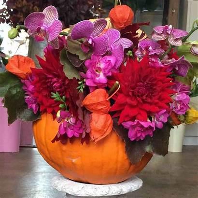 Halloween Floral Arrangement Austin Amanda Florist Orchid