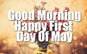 Good Morning, Happy First Day Of May Pictures, Photos, and ...