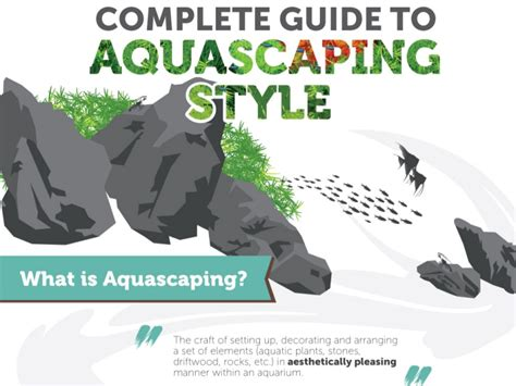 Guide To Aquascaping by Complete Guide To Aquascaping Style