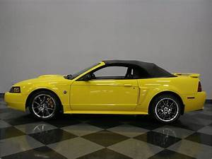 2004 Ford Mustang GT Coyote for Sale   ClassicCars.com   CC-971399