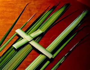A Concord Pastor Comments: Word for the Weekend: PALM SUNDAY