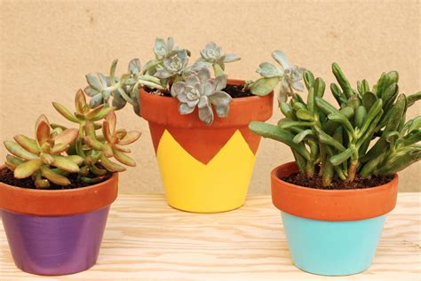 projet 1 39 les pots de fleurs joli bonheur un en californie