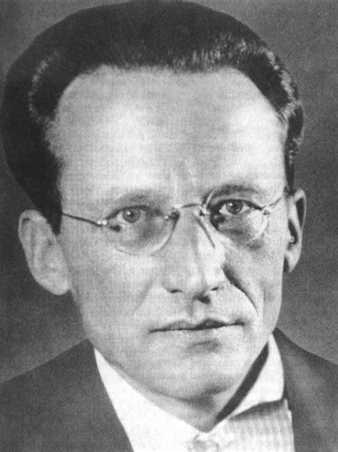 Schrödinger   Nurturing Insight : An Educational Blog