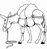 Coloring Pages Animal Farm Mule Drawing Clipart Horse Animals Clip Donkey Snoopy Hard Drawings Mules Colouring Loads Carry Heavy Valentine sketch template
