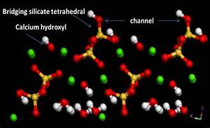 Molecular Dynamics Study Of Water And Ions Transported