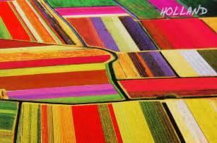 Holland Tulip Fields Netherlands