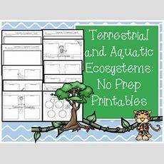 Ecosystems Worksheets & Printables  Aquatic Ecosystem, Keys And Worksheets