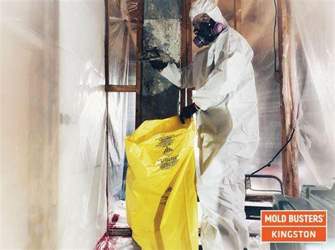 mold removal  kingston test  air  mold asbestos