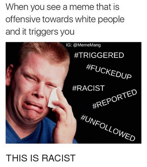 White Racist Memes - when you see a meme that is offensive towards white people and it triggers you ig triggered