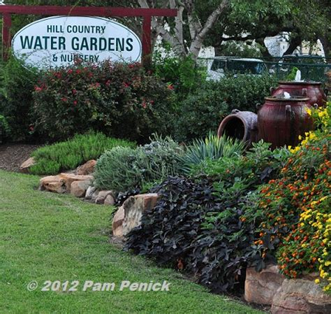winner of the hill country water gardens nursery