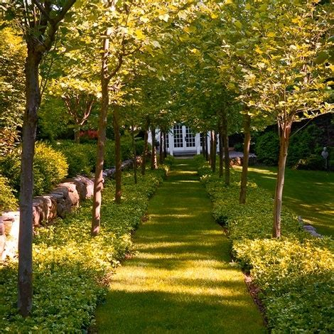 Magnificent Garden Formal Yet Inviting by 534 Best Allee Avenida Avenue Boulevard Viale Images