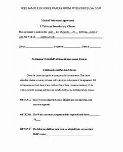 Printable Online South Carolina Divorce Papers  U0026 Instructions