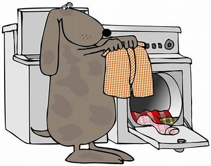 Laundry Clothes Dog Clipart Doing Drying Shake