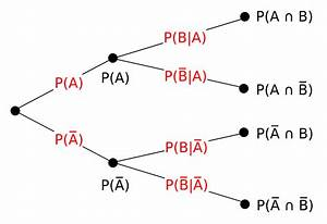 Tree Diagram  Probability Theory