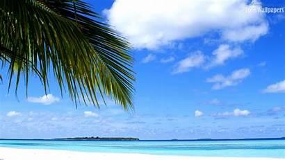 Island Maldives Windows Backgrounds Wallpapers
