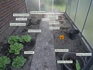 Ameisen Im Gewächshaus : mein balkon gew chshaus ~ Lizthompson.info Haus und Dekorationen
