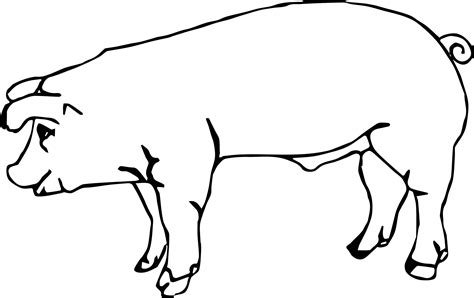 The Pig Coloring Pages Baby Farm Animal Pig Coloring Page Wecoloringpage