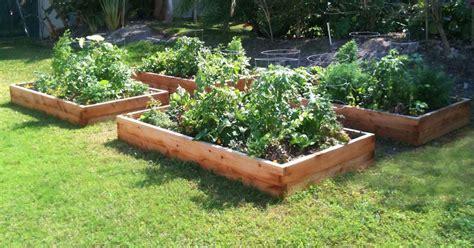 100 4x8 raised bed vegetable garden layout best