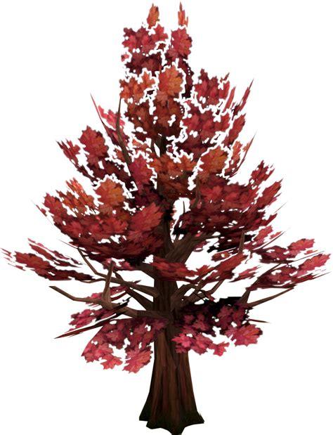 maple tree  runescape wiki
