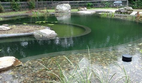 Swimming Pond : Bionova Natural Pools
