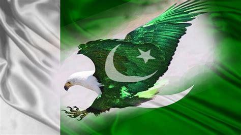 eagle pakistani flag wallpapers  hd hd wallpaper