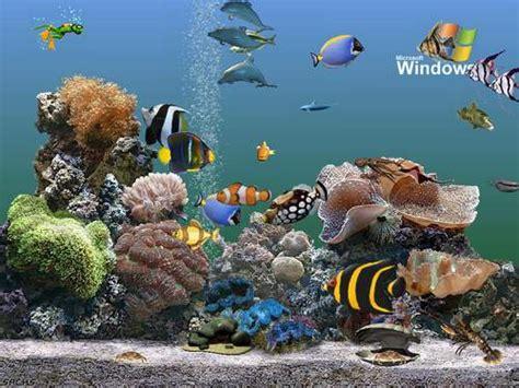 fond ecran aquarium anime gratuit desktop background fond d 233 cran anim 233 gratuit aquarium